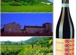 2018-07-31 FREE Wine Tasting Bordolino