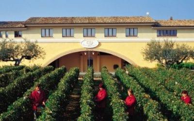 2018-10-04 FREE Wine Tasting -Marramiero Winery