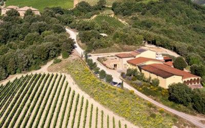 2019-03-05 Wine Tasting-Mastrojanni in Montalcino