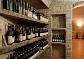Wine Tasting-Moccagatta Winery