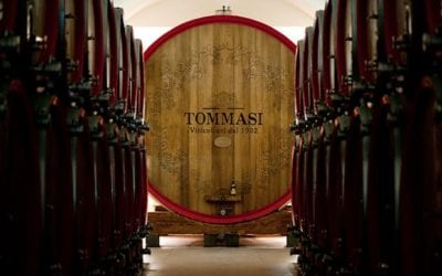 2019-09-17  FREE Wine Tasting Tommasi Family Estates