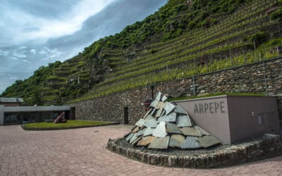 2019-10-08 FREE Wine Tasting ARPEPE Winery and Le Piane Winery