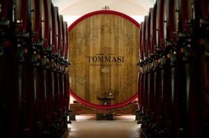 Tuesday Tastings 6 Wines Tommasi Winery @ Cuvino