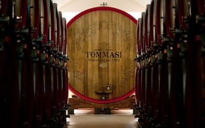 2020-02-04 TUESDAY TASTINGS 6 Wines from Tommasi Winery