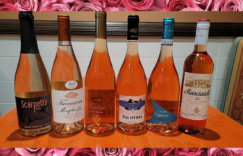 2021-05-17 Sweet Smell of Roses – Rose 6 Pack #2